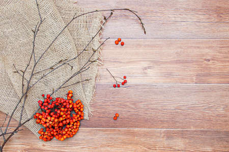 A bunch of red rowan and branches on a brown mat. Wooden planks background.