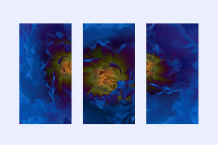 Picture of a panel triptych. Abstract blue flower on a yellow background. On the white wall.