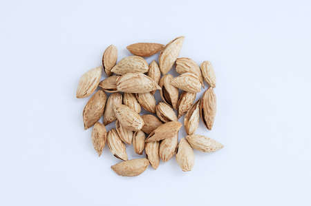 A handful of a bunch of berry nuts in shells on a white background.