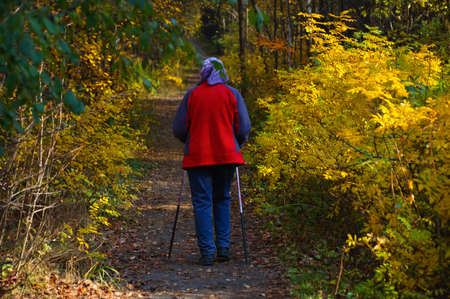 An elderly woman on a walk in the park in the autumn afternoon. View from the back.
