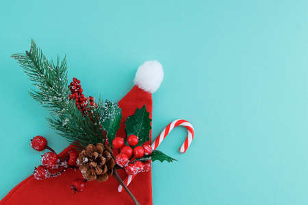 Christmas tree branch with red berries, pine cone and snowflakes and santa hat. Turquoise background.