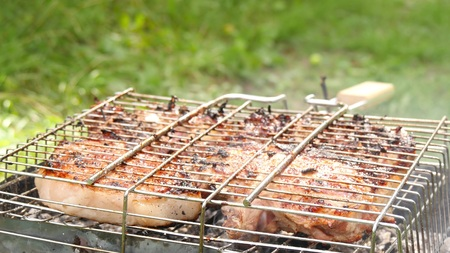 Large juicy pieces of meat are fried on the barbecue. Rest and cooking in nature.