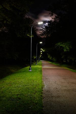 Walkway lane path at night, moonlit park alley. Foto de archivo