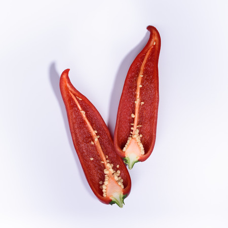 capsaicin: Red chili pepper cut in two pieces, top view, white background.