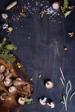 preserves: Shiitake mushrooms with herbs and spices. Fall menu ingredients. Preserves making background. Top view, copy space. Stock Photo