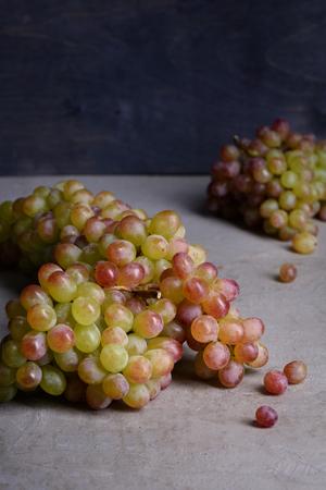 wine making: Grapes, fresh seasonal produce for wine making. Dark background, copy space.