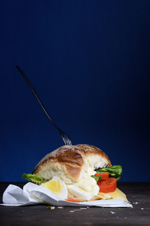 vegetarian hamburger: Sandwich with egg, cheese and tomatoes, healthy snack for breakfast or lunch. Copy space.