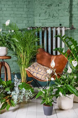 Interior of a room with leather vintage chair and green plants in pots. Brick wall background.