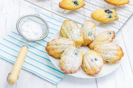 sugar powder: Sugar powdered madeleines with blueberries