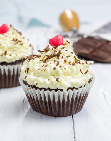 frosting': Chocolate cupcakes with ricotta cheese frosting