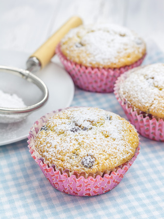 choco: Homemade muffins with choco chips, decorated with sugar powder