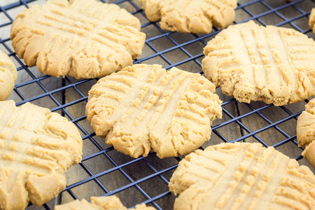 Freshly baked homemade peanut butter cookies on a cooling rack 免版税图像