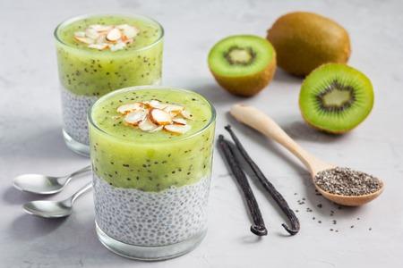 Vanilla chia pudding with kiwi, layered dessert, concrete background, horizontal