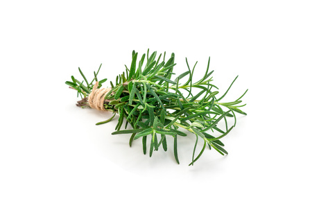 Tied bunch of fresh rosemary, isolated on white background Stock Photo
