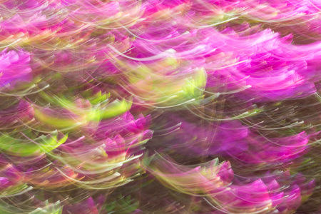 Abstract wave background image of azalea flowers with a motion blur effect Stock Photo
