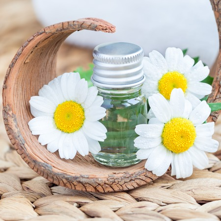 Chamomile essential oil in glass on woven mat with spa background, square format