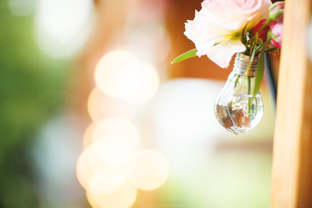 glower: Edisons light bulbs on the light background. Wedding decoration