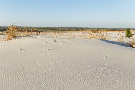 White sand in the desert with bright sun. Sand desert surface.