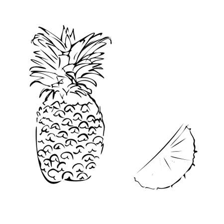 Vector illustration of a colored pineapple on a white isolated background. Shop sketch, banner, menu. Black and white outline.EPS 10