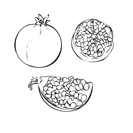 Vector illustration of a garnet on a white isolated background. Shop sketch, banner, menu. Black and white outline. EPS 10