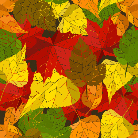 autumn leaves background: Autumn seamless background with hand drawn colorful leaves. Vector texture.