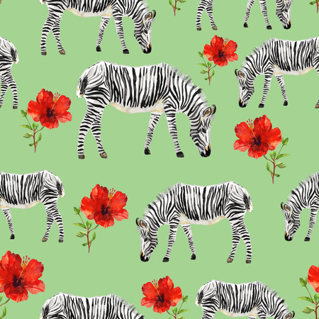 zebra skin: Hand painted watercolor seamless background. Isolated zebras and red hibiscuses on green background. Vector illustration.