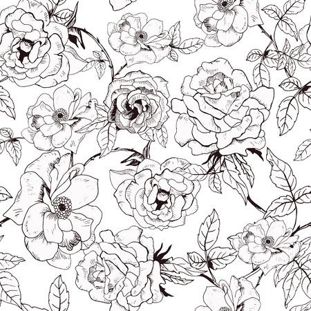 手描きの分離の白バラと抽象的なシームレス パターン。ベクトルの図。