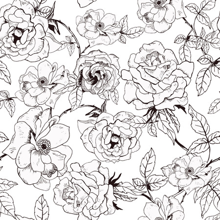 red black: Abstract seamless pattern with hand drawing isolated white roses. Vector illustration. Illustration