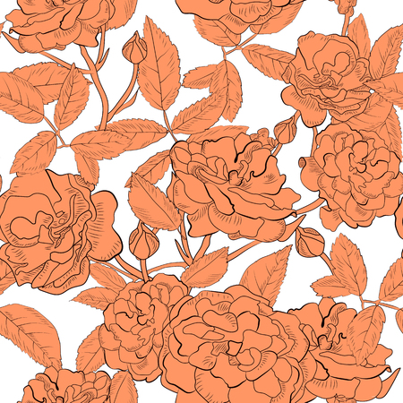 orange roses: Abstract seamless pattern with hand drawing isolated orange roses on white background.