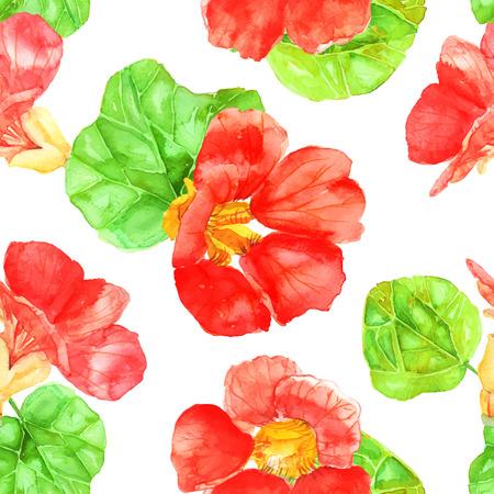 nasturtium: Vector illustration of floral seamless.