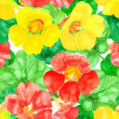 nasturtium: Vector illustration of floral seamless. Illustration