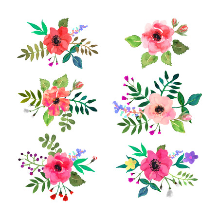 ilustration and painting: Vector flowers set. Colorful floral collection with leaves and flowers, drawing watercolor.Design for invitation, wedding or greeting cards