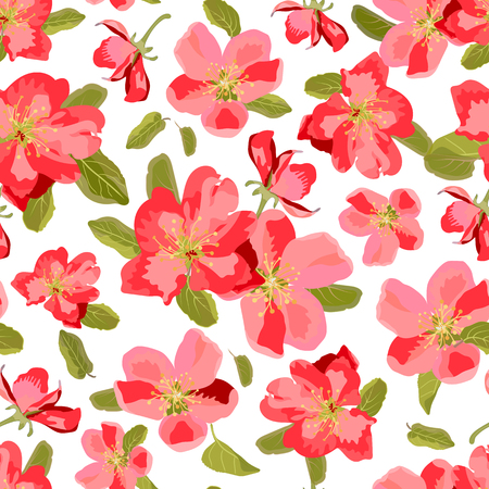 appletree: Abstract seamless pattern with isolated hand drawn flowers. Apple-tree flowers . Sakura flowers. Stock Photo