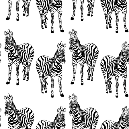 hid: Abstract hand painted seamless animal background. Zebra pattern. Vector.