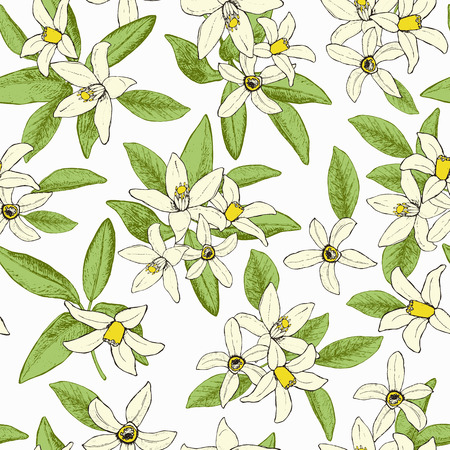 fruit tree: Floral spring seamless pattern of isolated hand drawn flowers in