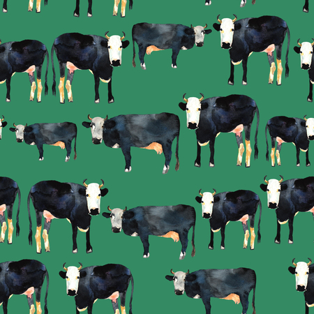 kine: Hand drawn seamless pattern with black and white kine. Cow in watercolor.