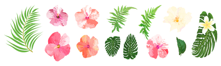 Floral set. Collection with isolated colorful hand drawn tropical flowers and leaves. Design for invitation, wedding or greeting cards. Vector illustration.