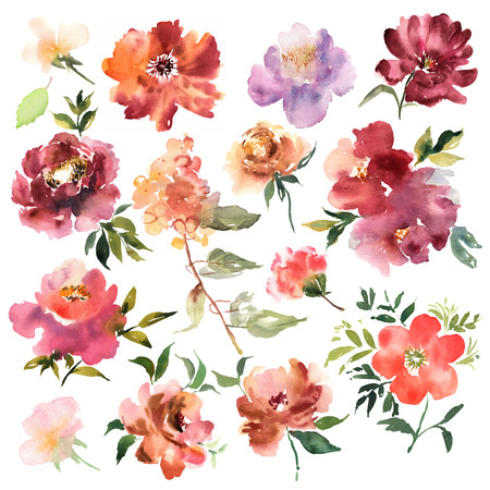 Watercolor flowers hand drawn colorful beautiful floral set with