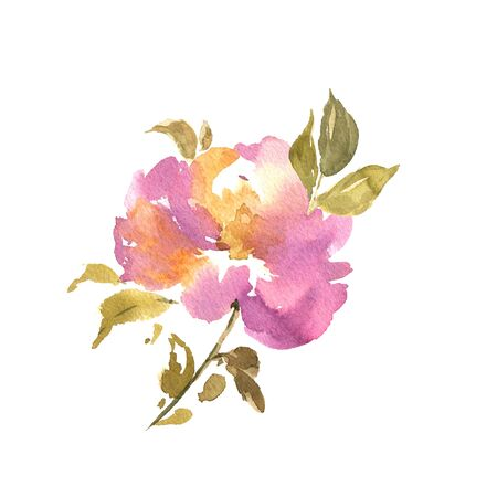 Watercolor flower hand drawn colorful beautiful pink isolated and blossom plant for cards prints and invitation