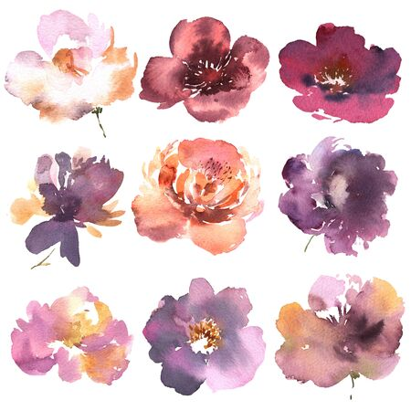 Floral set. Collection with flowers, drawing watercolor. Design for invitation, wedding or greeting cards.