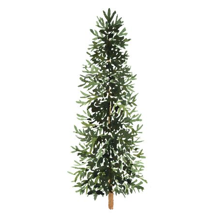 Watercolor green Christmas tree on white background. Isolated hand drawn elements for prints, cards. Stockfoto
