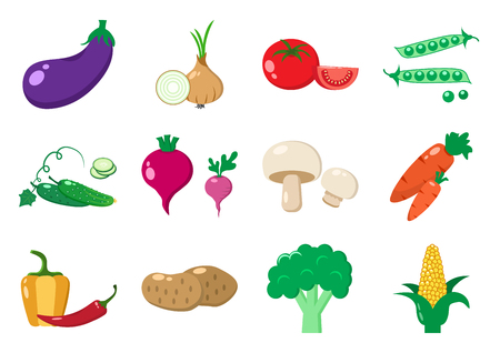 Set of vegetables, colorful vector illustration Illustration