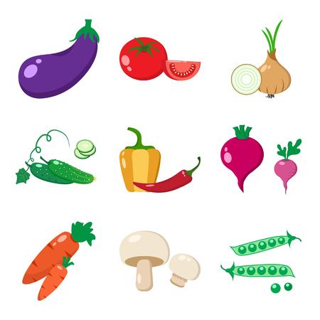champignon: Set of vegetables, colorful vector illustration Illustration