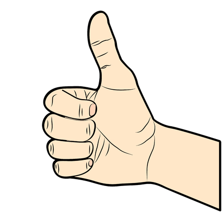 confirm: Thumb Up illustration. Hand-drawn. Vector.