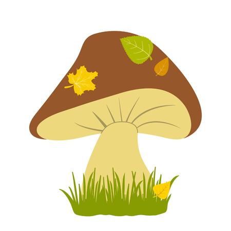 champignon: Mushroom in the grass. Colored autumn illustration. Vector illustration