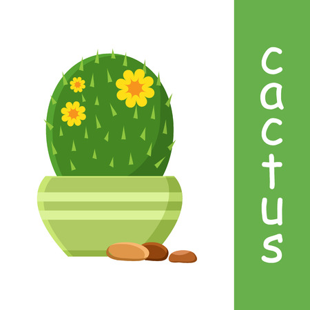 Flowering cactus in flowerpot with pebbles vector illustration