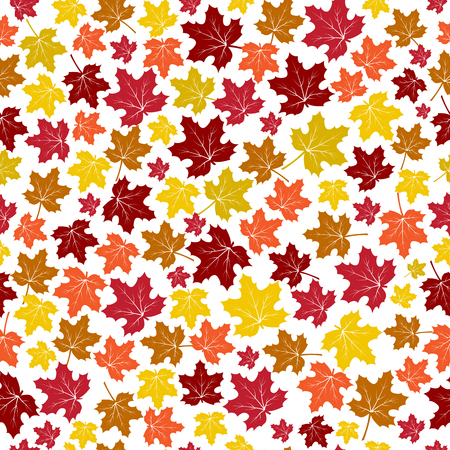 Seamless pattern with autumn colorful maple leaves isolated on white background. Vector illustration
