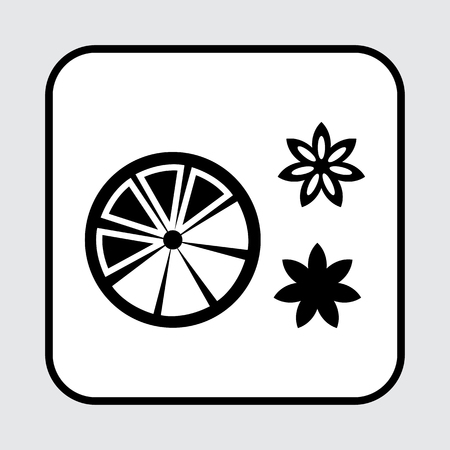 Slice citrus fruit and spice star anise. Black squared icon. Vector illustration