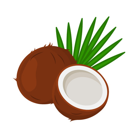 Coconut with leaves, whole and half.
