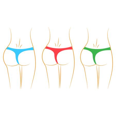 Women waist. Colorful panties. Vector illustration Illustration